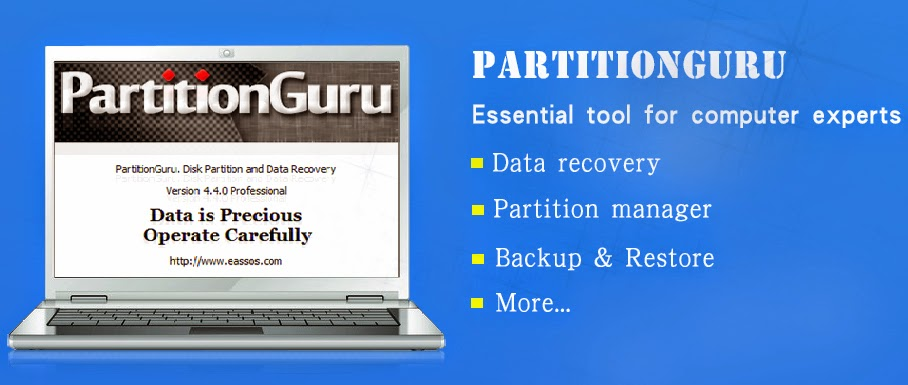 PartitionGuru Free Download