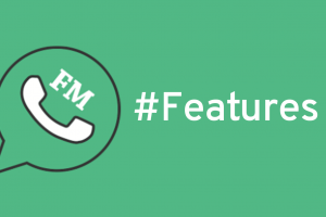 FMWhatsApp Features – All you need to know